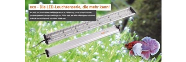 daytime LED Eco