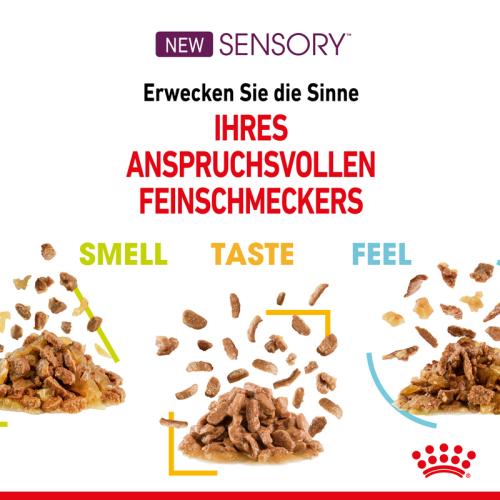 Royal Canin SENSORY Smell / Taste / Feel (12 x 85g)