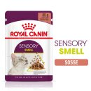 Royal Canin Sensory SMELL in Soße (12 x 85g)