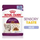 Royal Canin Sensory TASTE in Gelee (12 x 85g)
