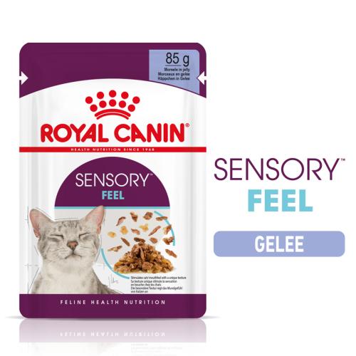 Royal Canin Sensory FEEL in Gelee (12 x 85g)