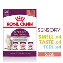 Royal Canin Sensory Multipack in Soße (12 x 85g)